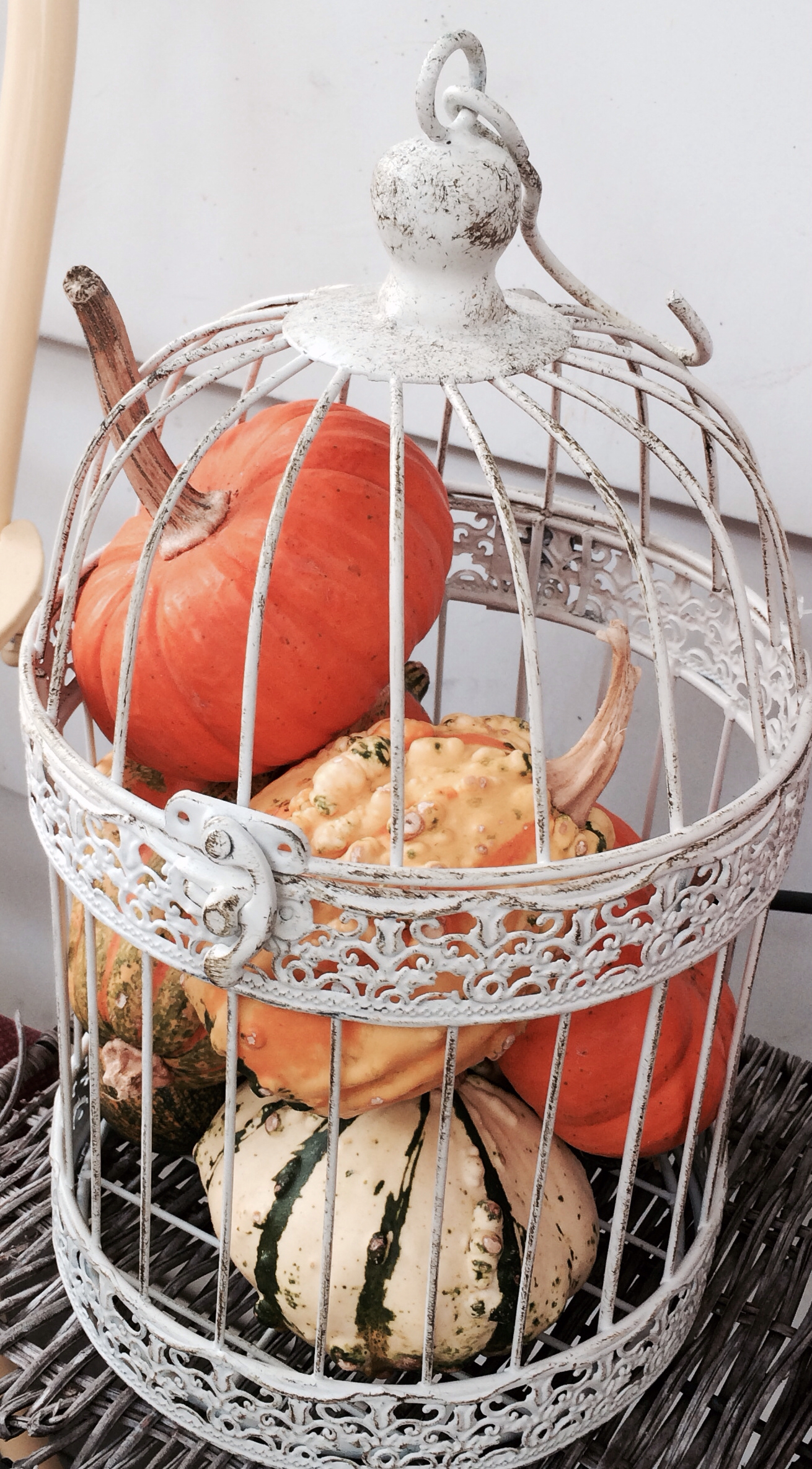 birdcage-filled-with-pumpkin-autumn-home-decor